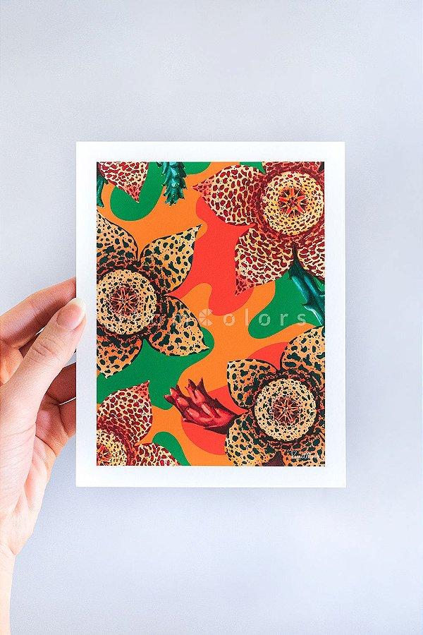 Mini Print Stapelia Floral de Suculentas em Aquarela