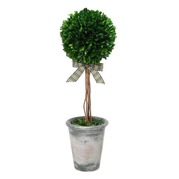 Vaso Decorativo Mini Árvore 53cm