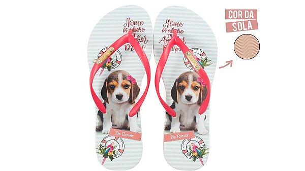 Chinelo Feminino Rafitthy Be Forever Beagle Anchor 110.92702_13