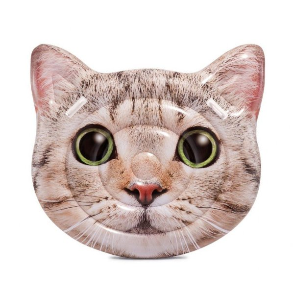 Boia Colchão Gato Gigante Divertida para Piscina