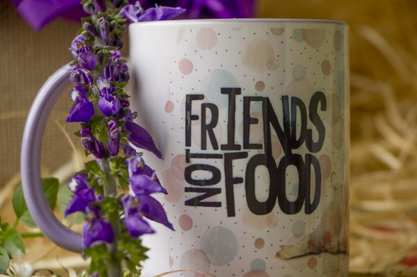 Caneca Friends not food