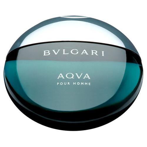 Perfume Bvlgari Aqva Pour Homme EDT Masculino 100ml