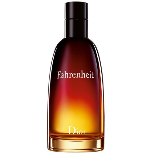 Perfume Christian Dior Fahrenheit EDT Masculino 100ml