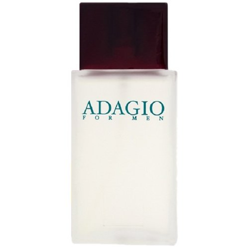 Perfume Paris Elysees Adagio Masculino 100ml