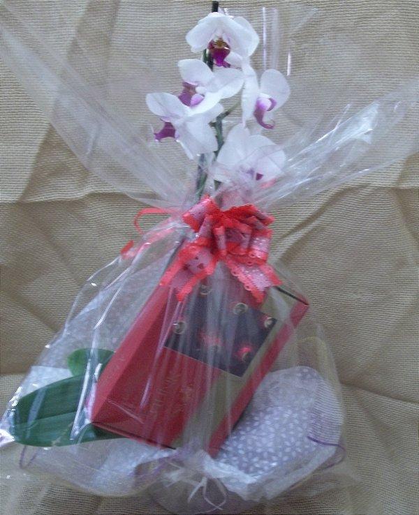 Cesta Orquídea com Caixa de Bombons de Cereja