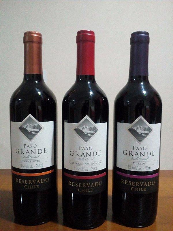 Vinho Paso Grande Carmenere 750ml