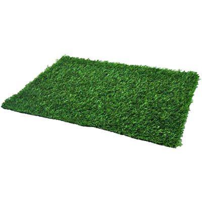 Refil de Graminha para Sanitário Higiênico Pet Injet Xixi Green Premium