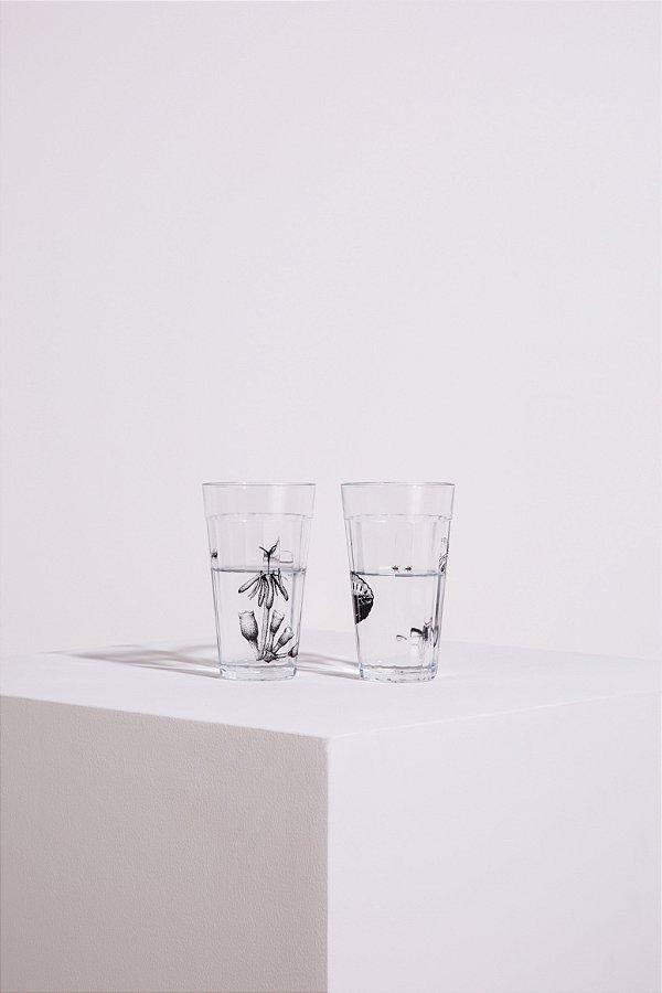 cj. de copos botânica