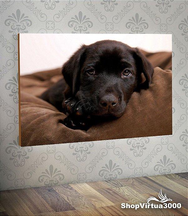 Placa em MDF Horizontal 6mm Ultra Brilho Personalizado Cão Labrador - 01 Unidade