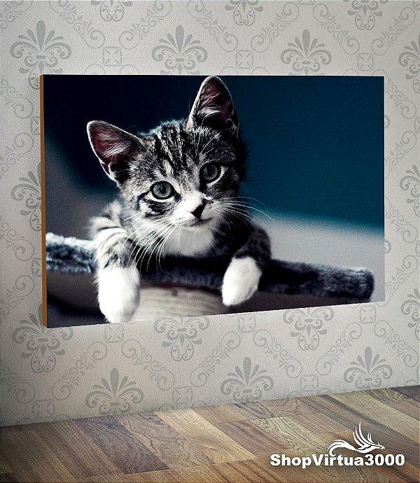 Placa em MDF Horizontal 6mm Ultra Brilho Personalizado Gato Listrado Fofo - 01 Unidade