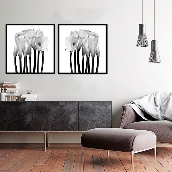Conjunto com 02 quadros decorativos Flor Copo-de-Leite