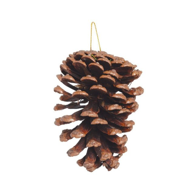 Enfeite para Pendurar Pinha de Natal 10cm - 5 unidades - Cromus Natal - Rizzo
