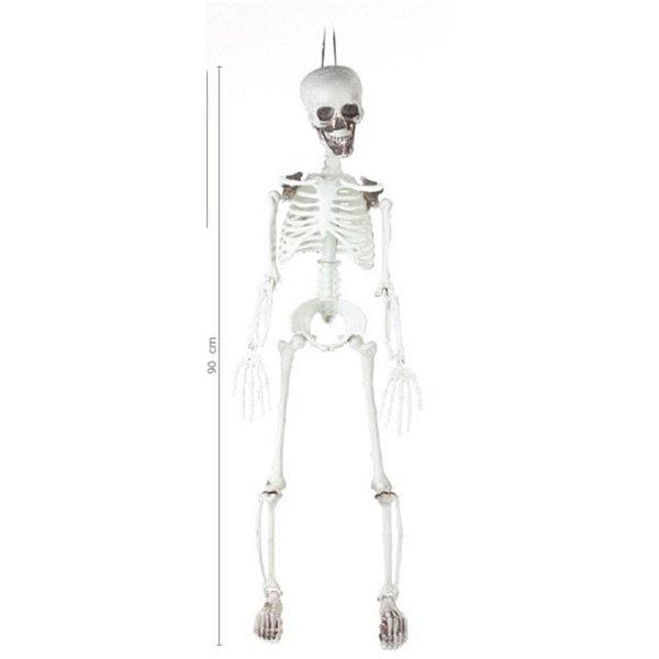 Esqueleto Caveira 7X16X90cm Hallowween Cromus Rizzo