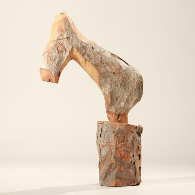 Cavalo do Mato