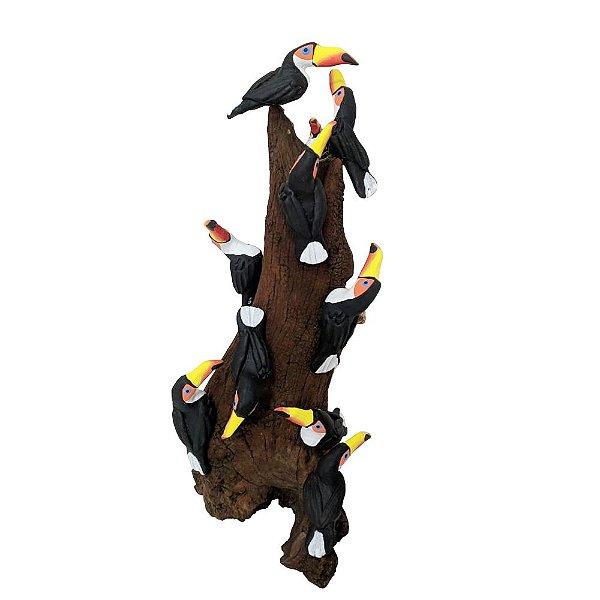 Tronco Com 10 Tucanos - MS