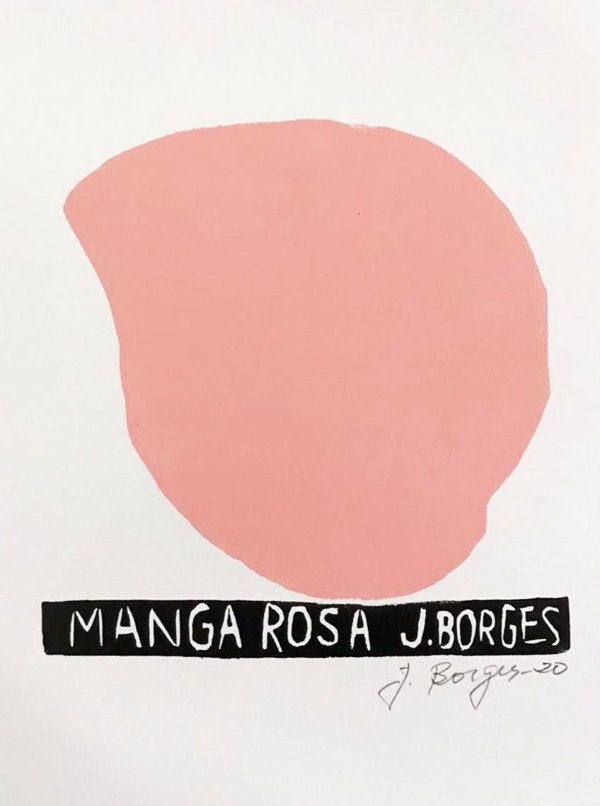 Xilogravura J. Borges Manga Rosa P - PE