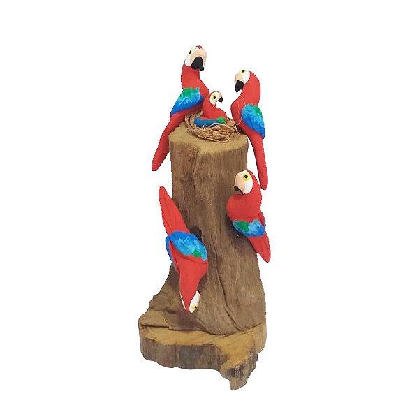 Tronco Com 4 araras vermelhas - MS