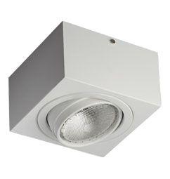 Luminária de Sobrepor Orientável  PAR30 Curta 17x17x10cm