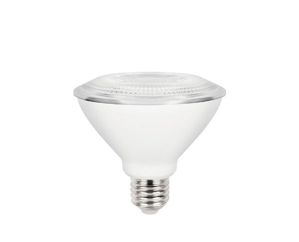 Lâmpada LED PAR30 9,5W 950lm E27