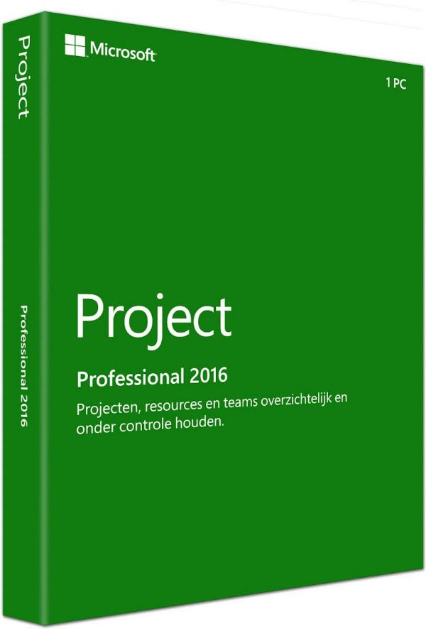 MICROSOFT PROJECT PROFESSIONAL  – ESD