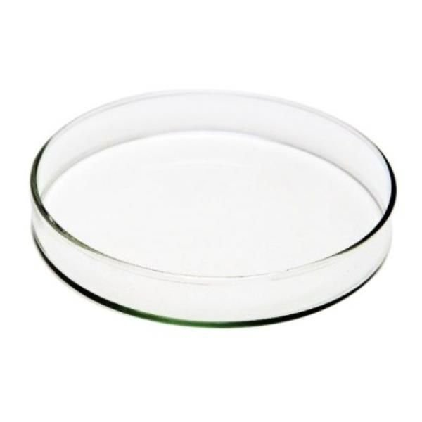 Placa de Petri para microbiologia 60x15mm em vidro, caixa com 48 unidades, mod.: PV6015 (Precision)