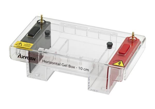 Cuba para eletroforese horizontal, tamanho de 10 x 10 cm, mod.: HGB-10 (Axygen)
