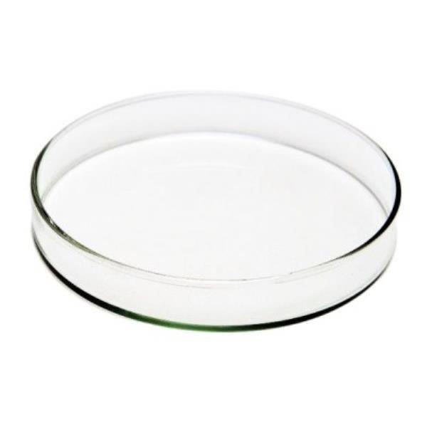 Placa de Petri para Microbiologia 60x15mm em Vidro, unidade, mod.: PV6015-UND (Precision)