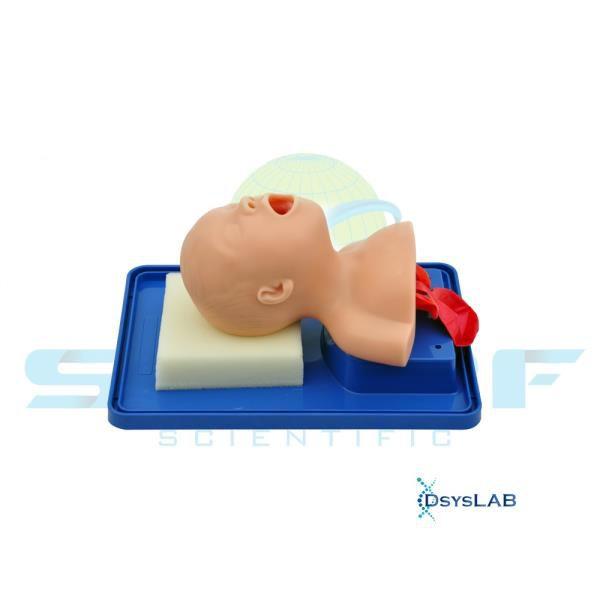 Simulador de intubação em bebê, mod.: SD4006 (Sdorf)