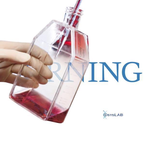 Frasco para cultivo de células T175, com tampa sem filtro, superfície TCT, Caixa com 50 unidades, mod.: 431079 (Corning)
