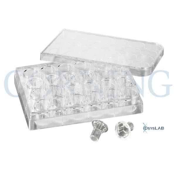 Insert de 6,5mm de membrana Policarbonato, poro de 5.0um, estéril emMicroplaca Transwell 24 poços, caixa com 48 peças. mod.: 3421 (Corning)