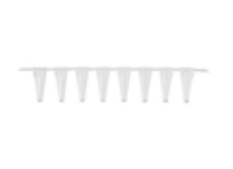 Tira com 8 tampas para microtubo de PCR 0,1ml (100ul), transparente, Caixa com 1250 tiras, mod.: PCR-0108-LP-RT-C (Axygen)