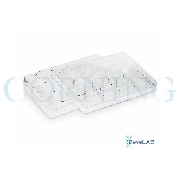 Insertos Transwell® de 12mm com inserção de Membrana Poliéster 0,4um em placa com 12 poços, caixa com 48 unidades, mod.: 3460 (Corning)