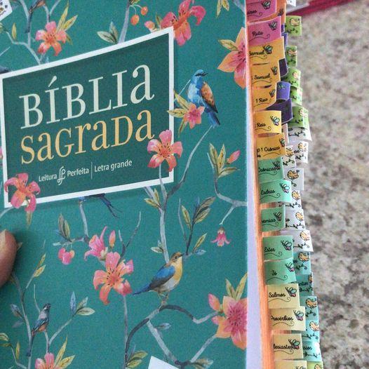Figurinhas para Bíblia