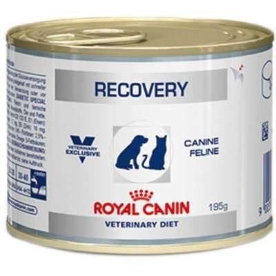 Royal Canin Canine e Feline Veterinary Diet Recovery Wet Lata