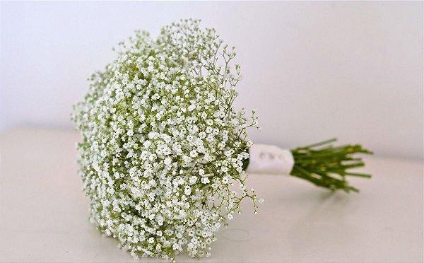 600 Sementes Da Flor Mosquitinho Branco