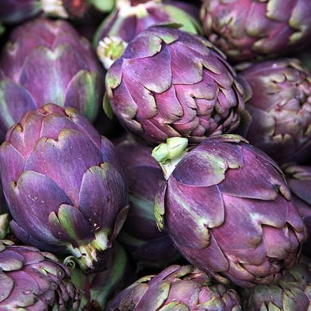 20 Sementes de Alcachofra Roxa