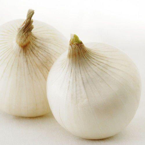 Sementes De Cebola White