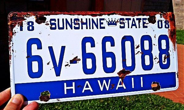Placa Decorativa Hawaii em Metal