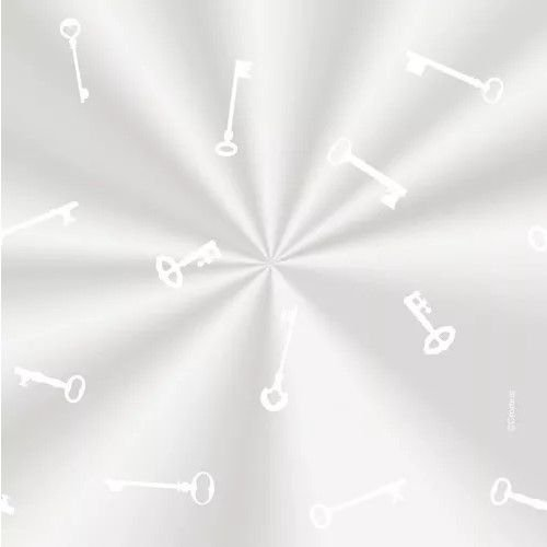 Saco Decorado Chavinha Branca - 20x29cm - 100 unidades - Cromus - Rizzo Embalagens