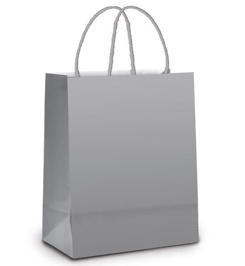 Sacola de Papel P 21,5x15x8cm - Prata Fosco - 10 unidades - Cromus - Rizzo Embalagens
