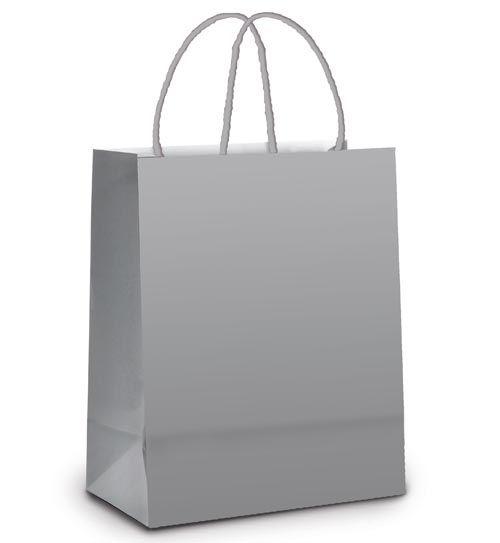 Sacola de Papel M 26x19,5x9,5cm - Prata Metalizado Fosco - 10 unidades - Cromus - Rizzo Embalagens