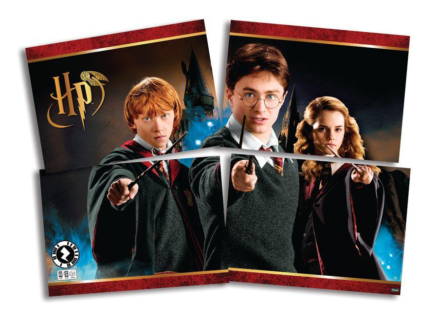 Painel Decorativo Festa Harry Potter - Festcolor - Rizzo Festas