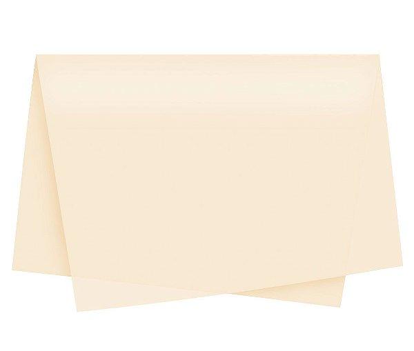 Papel de Seda - 49x69cm - Palha - 10 folhas - Rizzo Embalagens