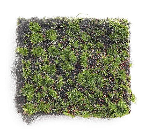Grama Artificial Verde Linha Rustic 1m - 01 unidade - Cromus Natal - Rizzo Embalagens