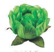 Forminha para Doces Finos - Bela Verde Limão Claro - 40 unidades - Decora Doces - Rizzo Festas