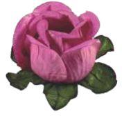 Forminha para Doces Finos - Rainha Rosê- 40 unidades - Decora Doces - Rizzo Festas