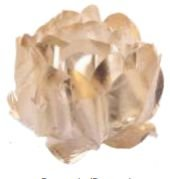 Forminha para Doces Finos - Rosa Maior Dourado/Dourado - 40 unidades - Decora Doces - Rizzo Festas