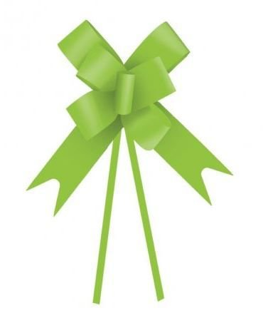 Laço Fácil Verde Claro - 10 unidades - Cromus - Rizzo Embalagens