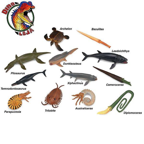 MINI ANIMAIS MARINHOS PRÉ-HISTÓRICOS COLLECTA CAIXA COM 12 MINIATURAS DE ANIMAIS AQUÁTICOS
