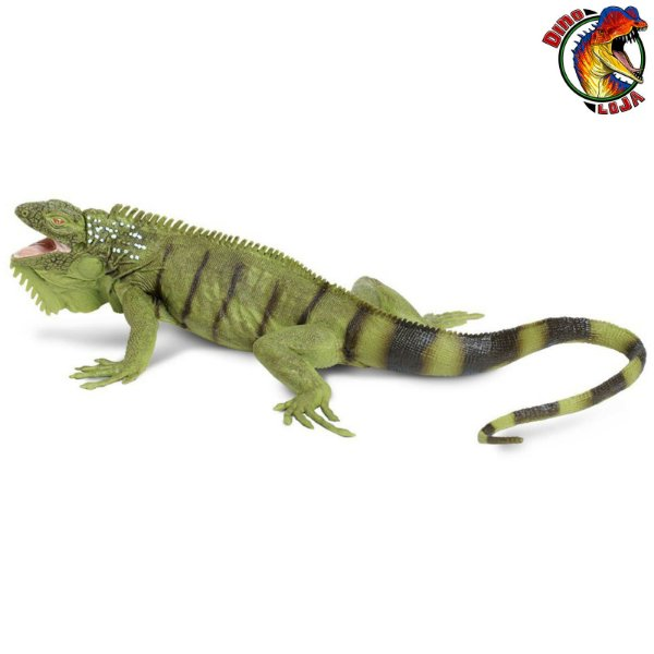 IGUANA VERDE INCREDIBLE CREATURES SAFARI LTD. MINIATURA DE ANIMAL SELVAGEM RÉPTIL LAGARTO